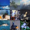 Collage van schilderijen in blauw.png