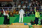 Competitions in gymnastics at the Olympics 2016. Discipline - rings. 14.jpg