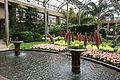 Conservatory - Longwood Gardens - DSC01046.JPG