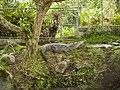 Costa Rica (6110319972).jpg