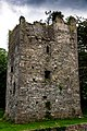 County Dublin - Balrothery Tower - 20190706161358.jpg