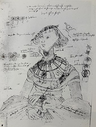 Study for portrait of Margaret of Pomerania (1518-1569), ca. 1545, a drawing with all details of the sitter's costume meticulously described, was intended for the future reference and to facilitate the work on large number of commissions in the artist's atelier. Cranach the Elder Margaret of Pomerania.jpg