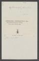 Ctenodactyla - Print - Iconographia Zoologica - Special Collections University of Amsterdam - UBAINV0274 010 02 03 0007.tif