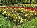 Díszvirágok a Margit-szigeten.jpg