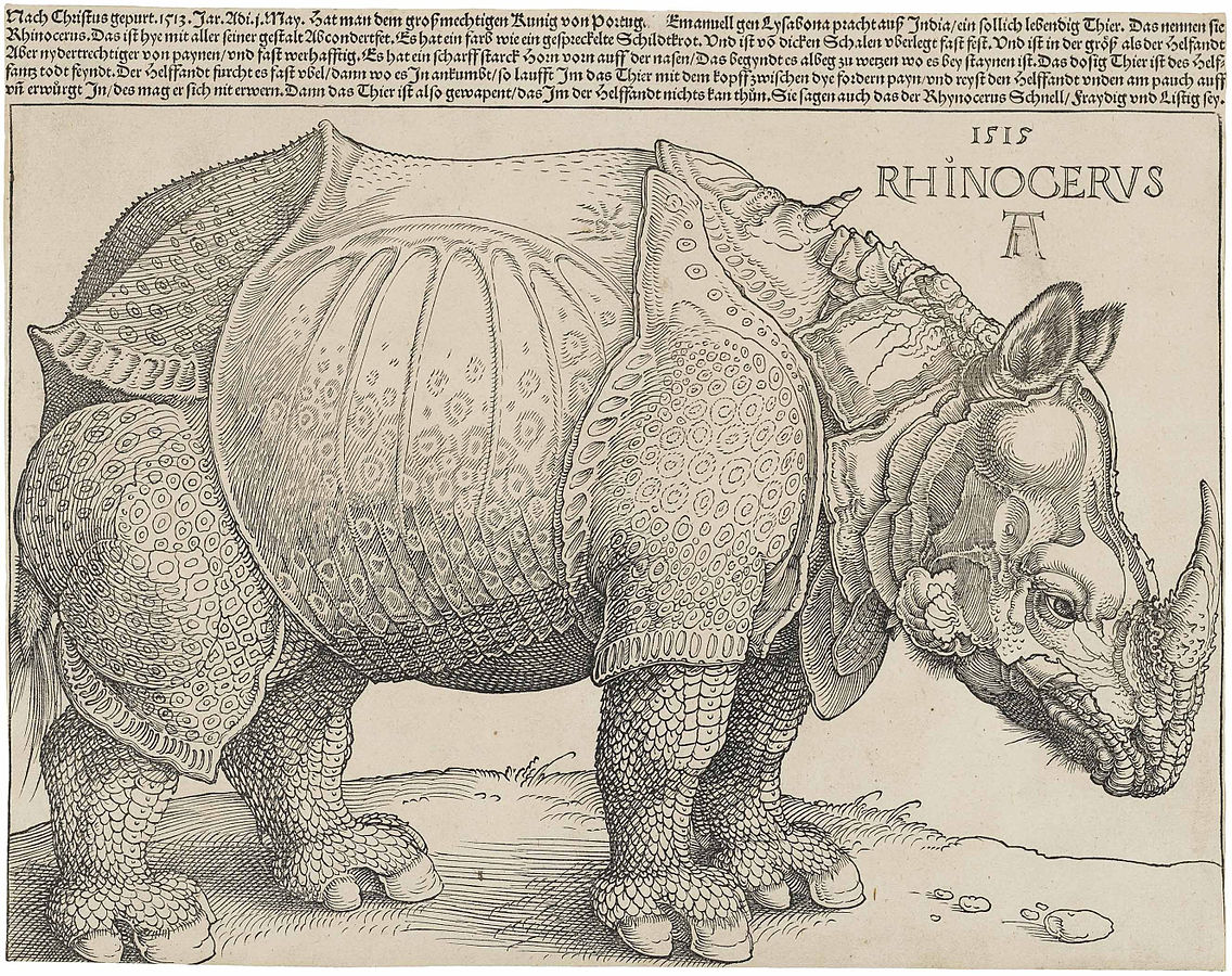 https://upload.wikimedia.org/wikipedia/commons/thumb/3/3f/D%C3%BCrer%27s_Rhinoceros%2C_1515.jpg/1136px-D%C3%BCrer%27s_Rhinoceros%2C_1515.jpg
