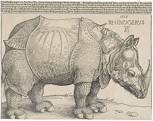 Dürer's Rhinoceros, 1515.jpg