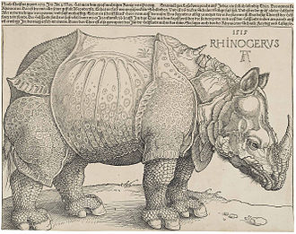 1515 in science - Dürer's Rhinoceros (1515)