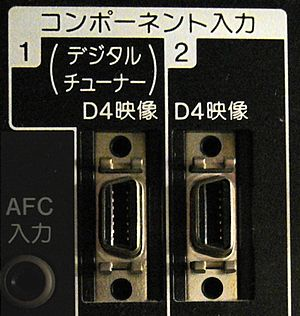 D-Terminal - Two D-Video connectors (D4) on an HDTV. The much smaller D-Terminal should not be confused with the similarly-shaped but larger VGA connector.