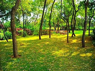 Dhirubhai Ambani Institute of Information and Communication Technology - Campus