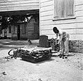 De Balata-bleeder bij het wegen van de balata-matten in Nickerie, Bestanddeelnr 252-5436.jpg