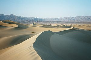 Sand dunes in Death Valley.