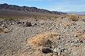 Death Valley National Park December 2013 002.jpg
