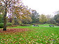 Delft park in autumn 3.JPG