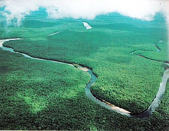 Oil sands - Panorama of the Orinoco River.
