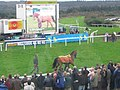 Devon Exeter Racecourse - Across the track to the giant TV screen - geograph.org.uk - 1292609.jpg