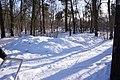 Die Schneeabraumhalde geschätzte 6-8m³ - panoramio.jpg