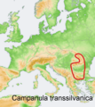 Distribution map Campanula transsilvanica.png