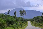 File:District-Semporna Sabah Semporna-Kunak-Road-04.jpg