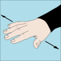 Dive hand signal Level out.png