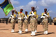 Djibouti Army stand at attention