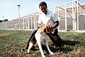 Dog and handler.jpg