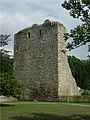 Drumin Tower - geograph.org.uk - 259176.jpg