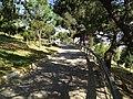 Dumlu Pınar Mah - panoramio.jpg