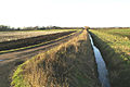 Dyke and ditch - geograph.org.uk - 90553.jpg