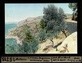 ETH-BIB-Mallorca, von der Küsten-Bergstrasse, Valldemossa-Soller-Dia 247-15715.tif