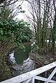 East along the Dene - geograph.org.uk - 1205089.jpg