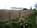 Easter Mye - geograph.org.uk - 394955.jpg