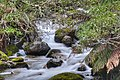 Eight Mile Creek, NSW, Australia.jpg