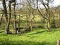 Ellen Spring, off Flask Lane, Thurstonland - geograph.org.uk - 393743.jpg