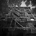 Emergency Stairs (193268161).jpeg