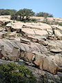 Enchanted Rock Nima (4).JPG
