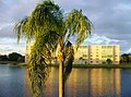 End of the day on Meadowbrook Lakeview Condominium in Dania Beach, Florida...Belle journée qui achève... - panoramio.jpg
