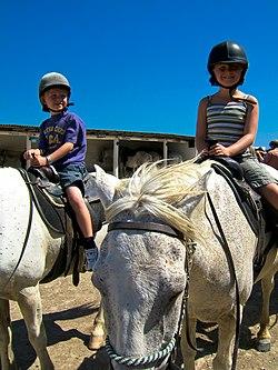 Enfants apprenant l'équitation en Camargue.jpg