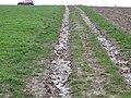 Erosion Off-site Wege012.JPG