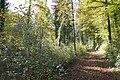 Eschenberg - panoramio (17).jpg