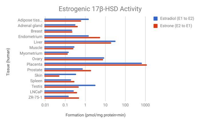 Distribution of 17β-HSD activities for formation of estradiol versus estrone in human tissues.[8][9]