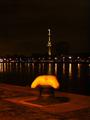 Euromast bij nacht met bolder.png