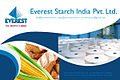 Everest starch (ind) pvt ltd.jpg