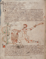 F13.v. Page with Hercules - NLW MS 735C.png