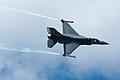 F16 - Fighting Falcon - USAF (4891933256).jpg