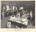 FMIB 35838 Sardine Industry.jpeg