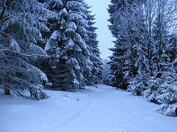 Falk Oberdorf Wiehengebirge Winter Heidbrink