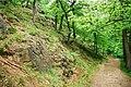 Falkenstein (Harz), the way to the castle Falkenstein.jpg