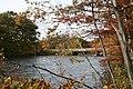 Fall - panoramio (5).jpg