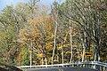 Fall Colors - panoramio (64).jpg