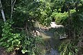 Fall Creek from IL57 bridge.jpg